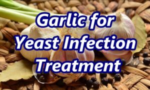 How to Apply Garlic for Yeast Infection Home Remedy